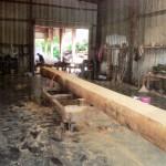 Smoky Mountain foot bridge timber